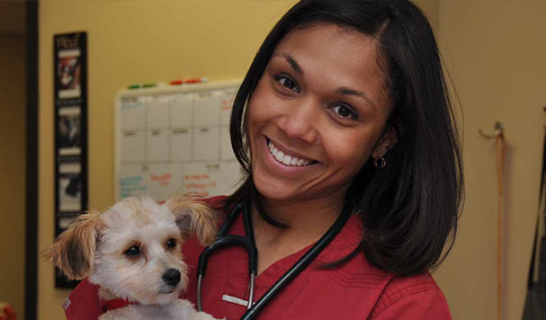 Fear Free Veterinary Care in Ypsilanti & Ann Arbor MI