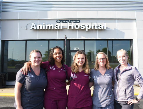 About South Arbor Animal Hospital