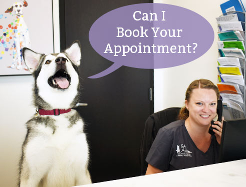 request-appointment-south-arbor-animal-hospital-mi